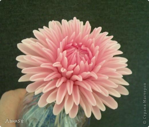 Мастер-класс, Флористика Лепка: Мини МК по лепке лепестков хризантемы Фарфор холодный. Фото 1/3734205_may2012g_086 (520x443, 48Kb)