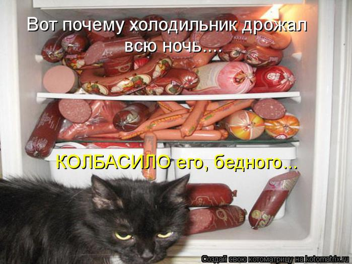 kotomatritsa_MK (700x524, 64Kb)