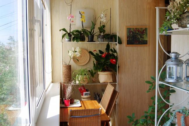 Идеи для дизайна балкона :: blogrider.ru.