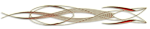 0_4bd16_2a92e18a_S (150x29, 10Kb)