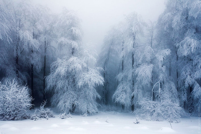 http://img0.liveinternet.ru/images/attach/c/7/94/949/94949360_0_98c8c_abc9a516_orig.jpg
