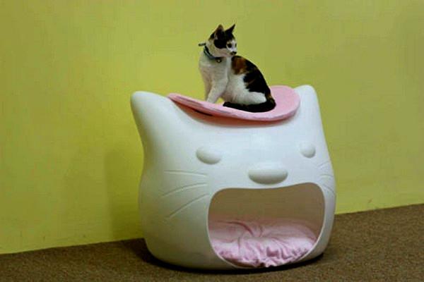 Studio_Mango_Kitty_Meow_2 (600x400, 37Kb)