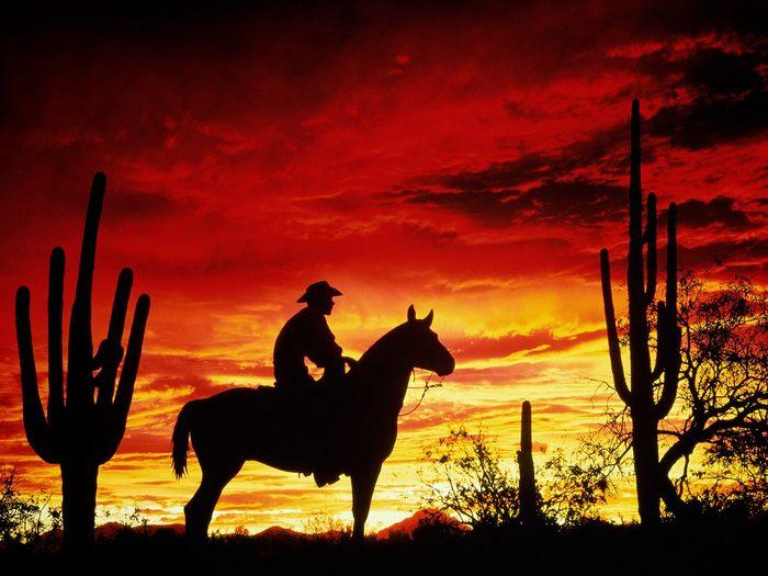 3330929_72786730_1033468_RaznoeCrimson_Cowboy (700x525, 64Kb)