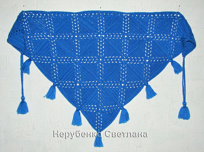 Синий бактус_3 (700x519, 196Kb)