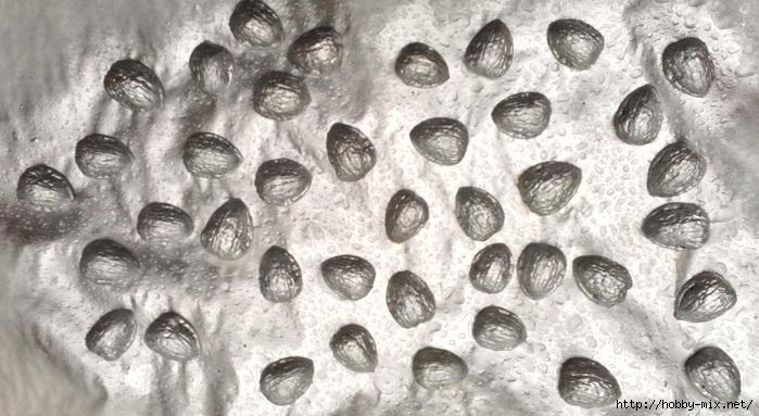 Silver-Walnut-vase-walnuts-painted-silver (700x383, 248Kb)