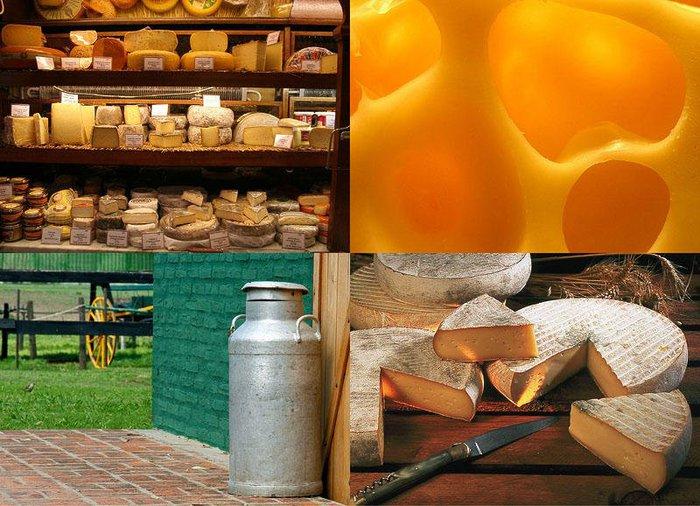 10 фактов о сыре/1355565321_1355254478_1 (700x506, 100Kb)