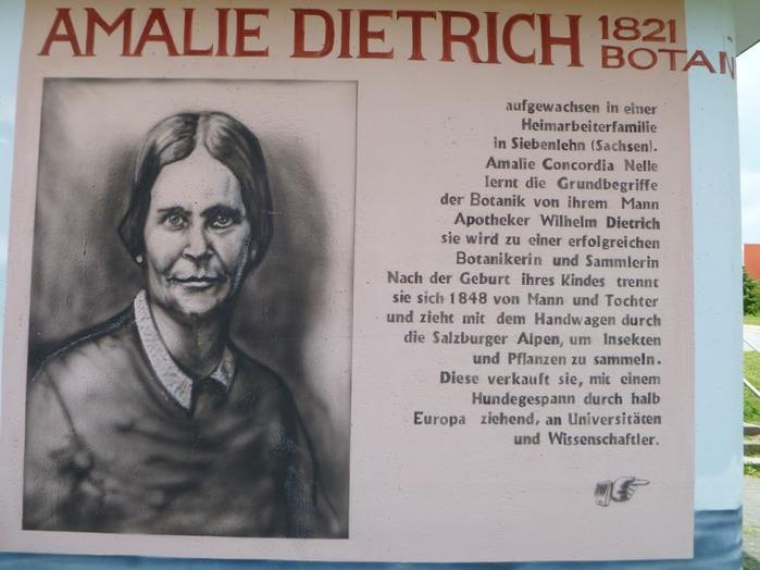 Граффити города Дрезден- часть 3. 15646