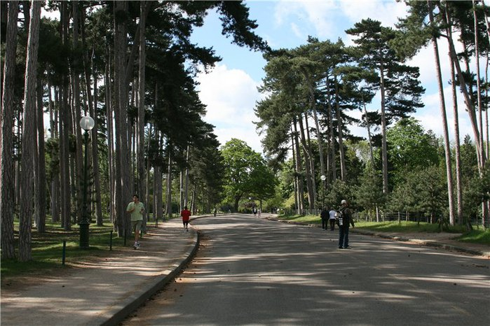 Bois de Boulogne7 (700x466, 104Kb)