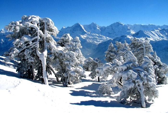 Ах, зима, зима... 92559
