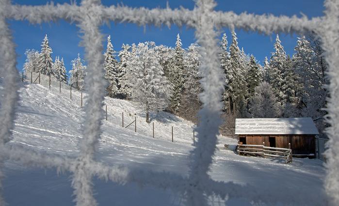 Ах, зима, зима... 36482