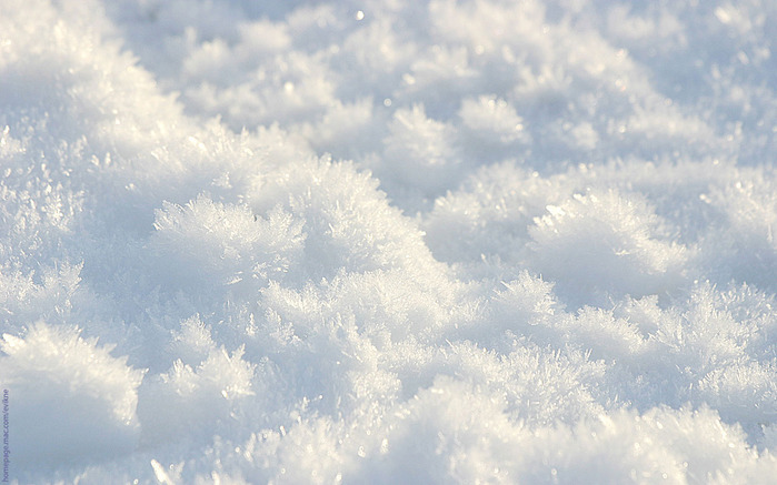Nature_Seasons_Winter_Only_winter_snow_006435_ (700x437, 97Kb)
