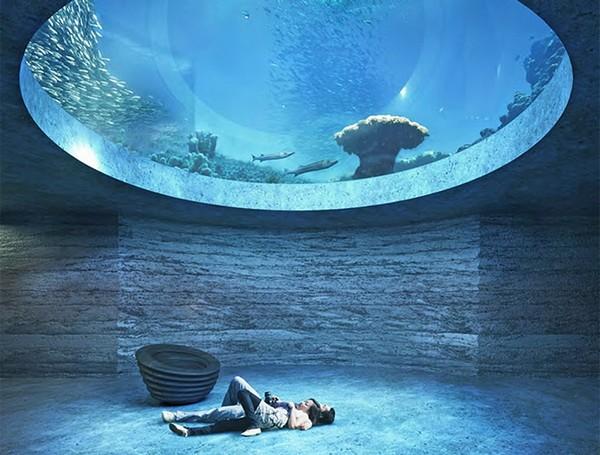 аквариум в базеле фото (600x455, 82Kb)