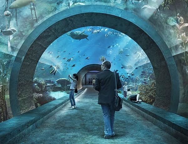 аквариум в базеле фото 2 (600x460, 89Kb)