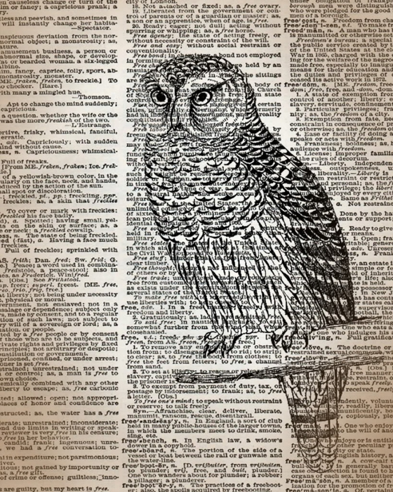 dictionaryowl (560x700, 392Kb)