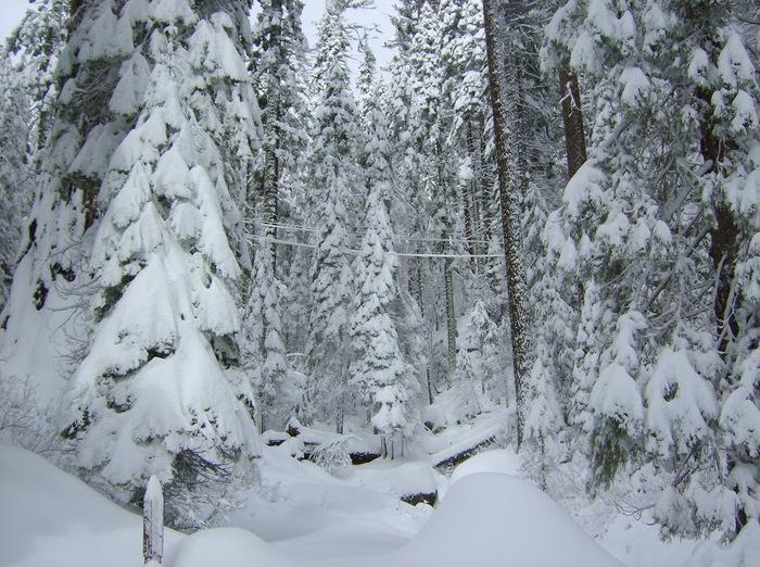 Ах, зима, зима... 70767