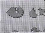 Превью oufs 3 (700x525, 223Kb)