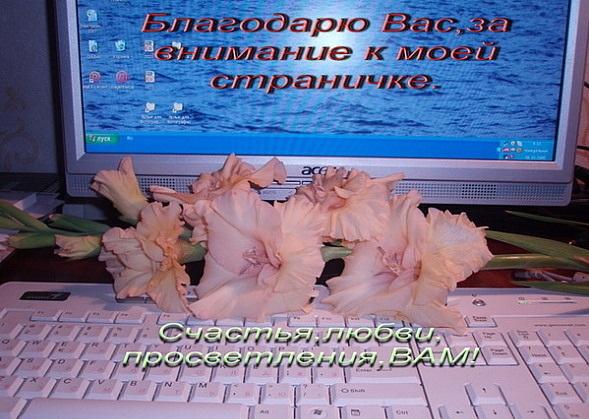 Поздравления виртуального друга