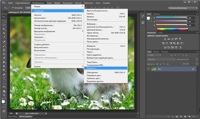 Выбираем вариации цвета в Photoshop CS6. Автоматическая цветокоррекция изображений Фотографии