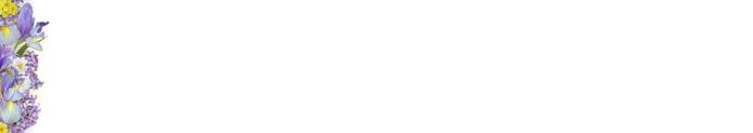 fioflow02 (700x123, 7Kb)