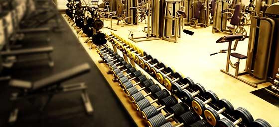 Силовые тренажеры или свободные веса?