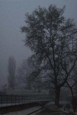 туман и вечер/4348076_tyman4 (300x450, 35Kb)