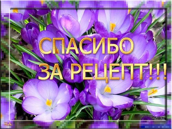 92381819_84564059_83162888_spasibo_za_recept (600x450, 100Kb)
