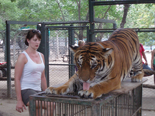 тактильный зоопарк аргентина город лухан 8 (500x375, 198Kb)