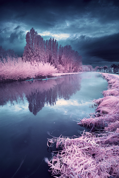 инфракрасные пейзажи фото 14 (401x600, 279Kb)