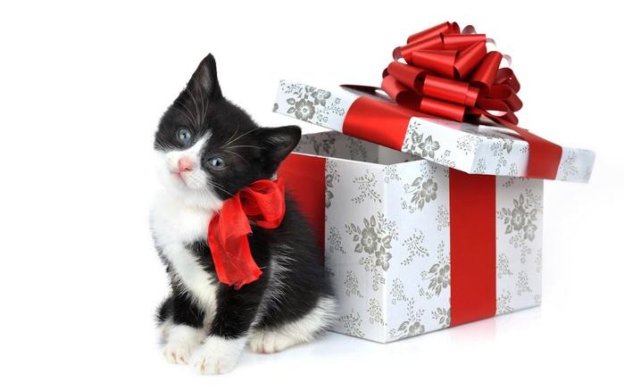 С наступающим Новым Годом и Рождеством. 43311