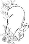 Превью кролик (457x700, 114Kb)