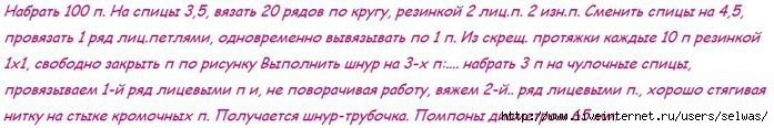 4683827_20121229_052522 (700x116, 93Kb)