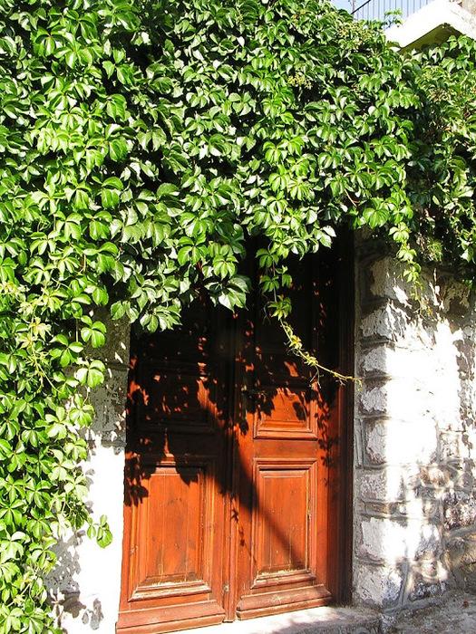 Остров Лесбос - Остров одетый в зелень сосен, оливковых деревьев и дубов. Часть 1 18439