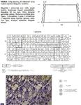Превью 2-1 (544x700, 231Kb)