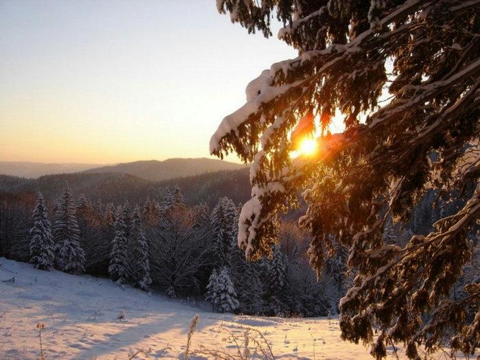 фото зима новый год