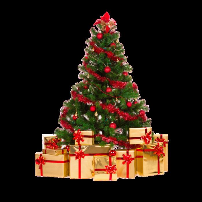 Открытие детской новогодней елки в комплексе Петровский Бровар.