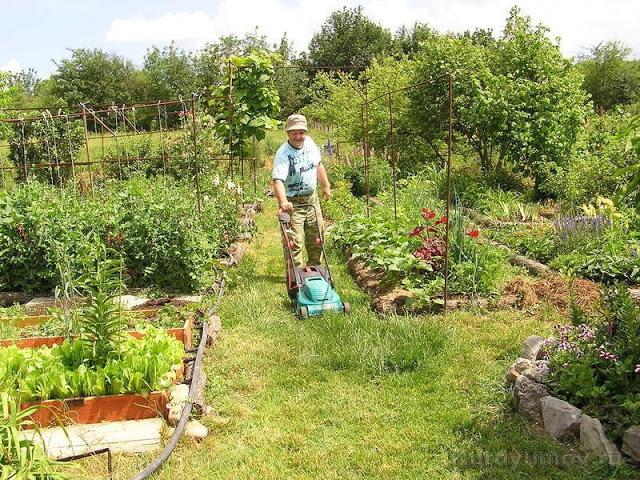 Плодородная почва - это просто! (2) (640x480, 199Kb)