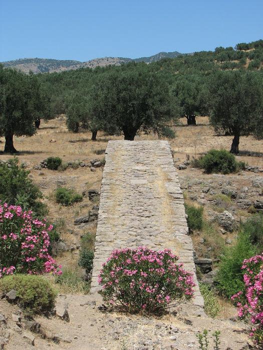 Остров Лесбос - Остров одетый в зелень сосен, оливковых деревьев и дубов. Часть 1 56075