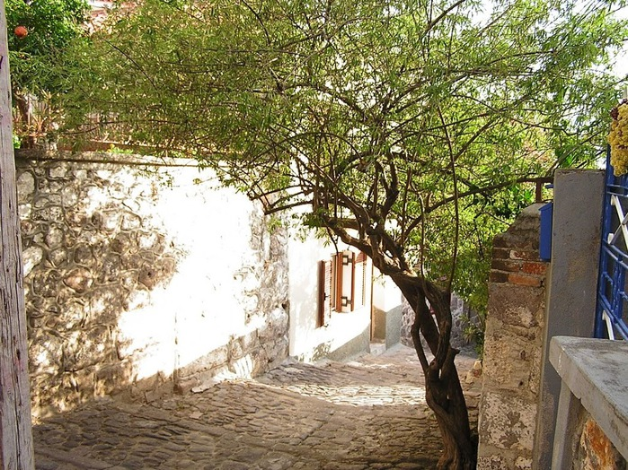 Остров Лесбос - Остров одетый в зелень сосен, оливковых деревьев и дубов. Часть 1 71502