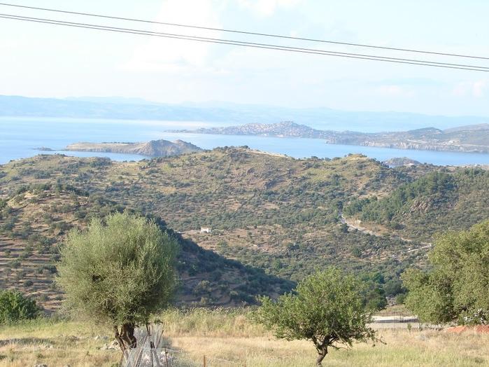 Остров Лесбос - Остров одетый в зелень сосен, оливковых деревьев и дубов. Часть 1 65420