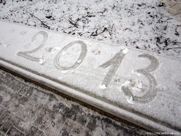 Воронеж, новогоднее, 8 (700x525, 337Kb)
