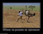 ������ _65_20110606_1586447972 (500x400, 136Kb)