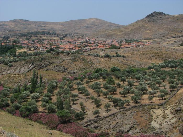 Остров Лесбос - Остров одетый в зелень сосен, оливковых деревьев и дубов. Часть 1 50737