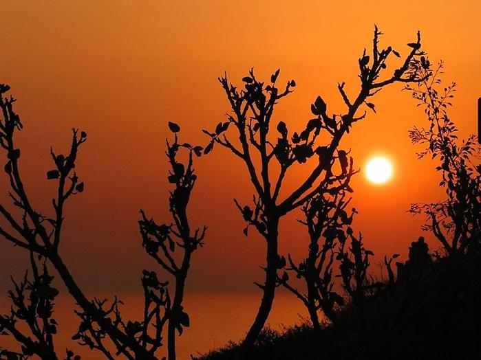 Остров Лесбос - Остров одетый в зелень сосен, оливковых деревьев и дубов. Часть 2 40238