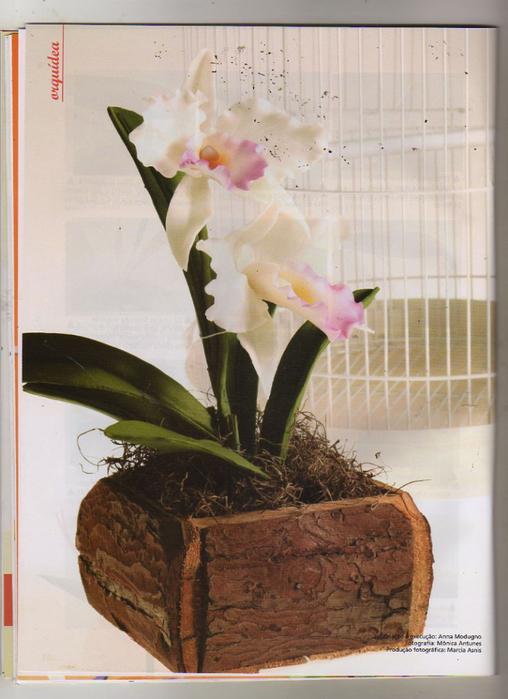 Anna Modugno Especial Flores n 1 020 (508x700, 355Kb)