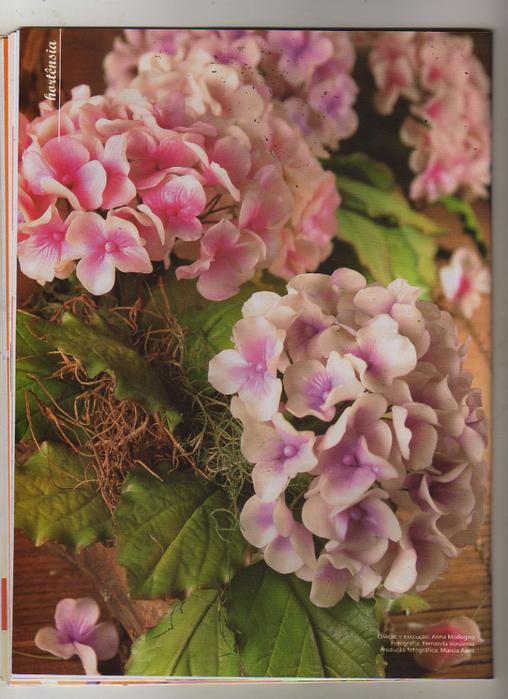 Anna Modugno Especial Flores n 1 030 (508x700, 412Kb)
