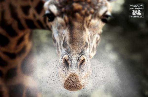 прикольная реклама зоопарка 1 (600x395, 28Kb)