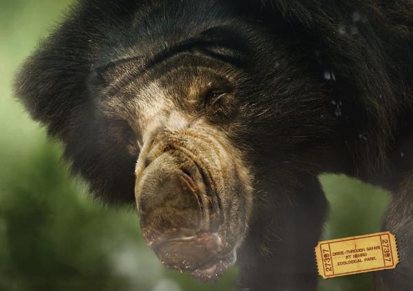 прикольная реклама зоопарка 2 (600x423, 32Kb)