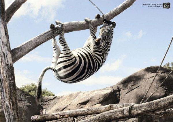 прикольная реклама зоопарка 16 (600x423, 104Kb)
