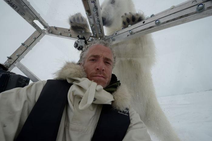 видео про белых медведей из кавказской пленницы