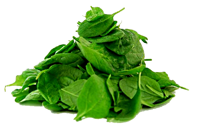 1316428524_baby-spinach-leaves (1) (640x428, 306Kb)